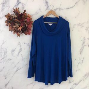 Terra Sky Cowl Neck Sweater